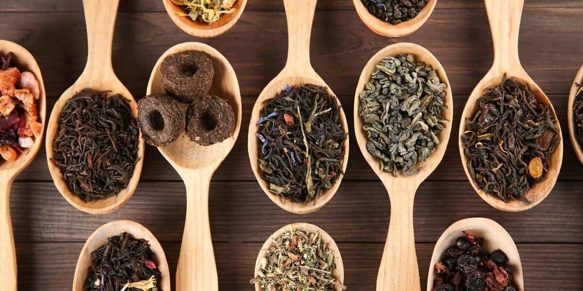 Diversos tipos de chás e tisanas